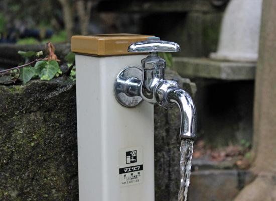 水道水 めだかを養う
